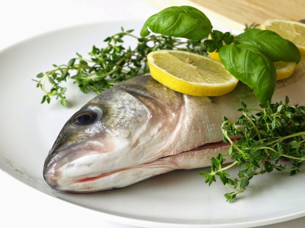 bayat balık nasıl anlaşılır